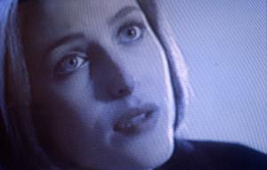 Mulder 1