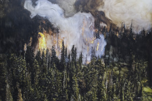 Forest Fire Hobson