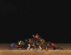 22 A-Pile-of-Flies